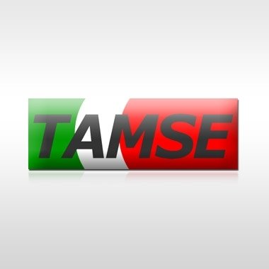 TAMSE